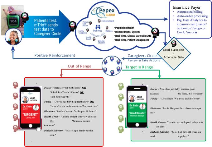 How Pepex Cloud Works